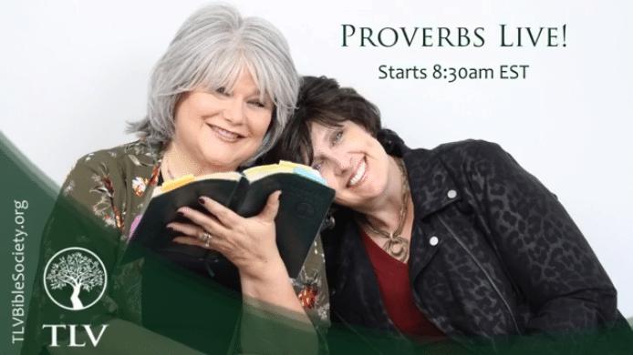 Proverbs LIVE: Proverbs 26:16