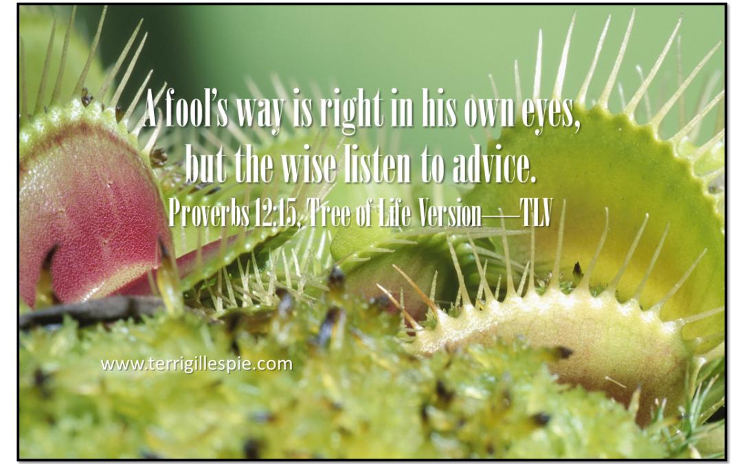 Wisdom's Journey: Proverbs 12:15