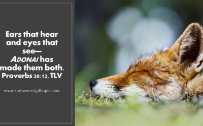 Wisdom's Journey: Proverbs 20:12