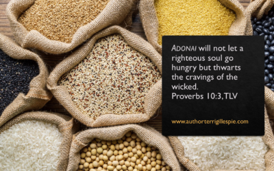 Wisdom's Journey: Proverbs 10:3