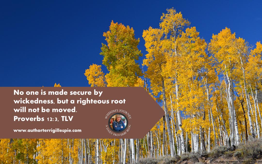 Wisdom's Journey: Proverbs 12:3