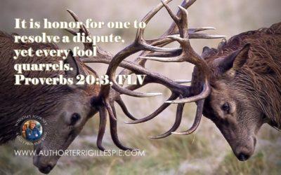 Wisdom's Journey: Proverbs 20:3