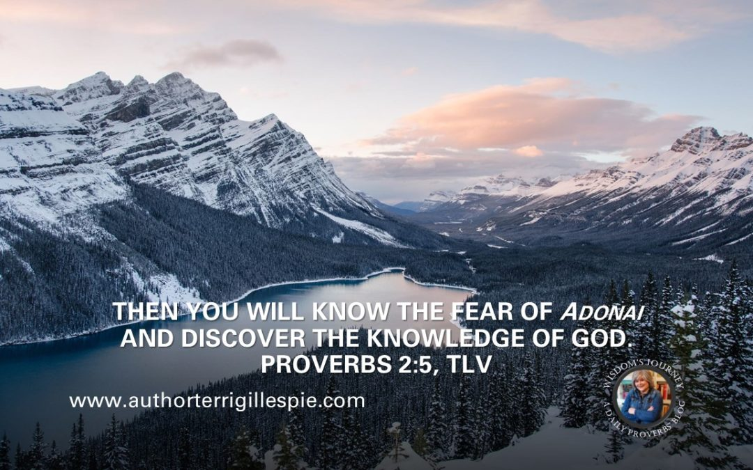 Wisdom's Journey: Proverbs 2:5