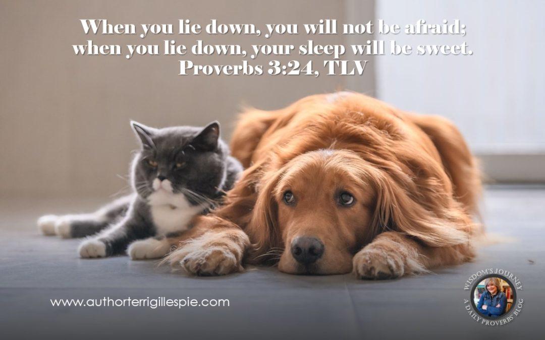 Wisdom's Journey: Proverbs 3:24