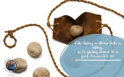 Wisdom's Journey: Proverbs 26:8
