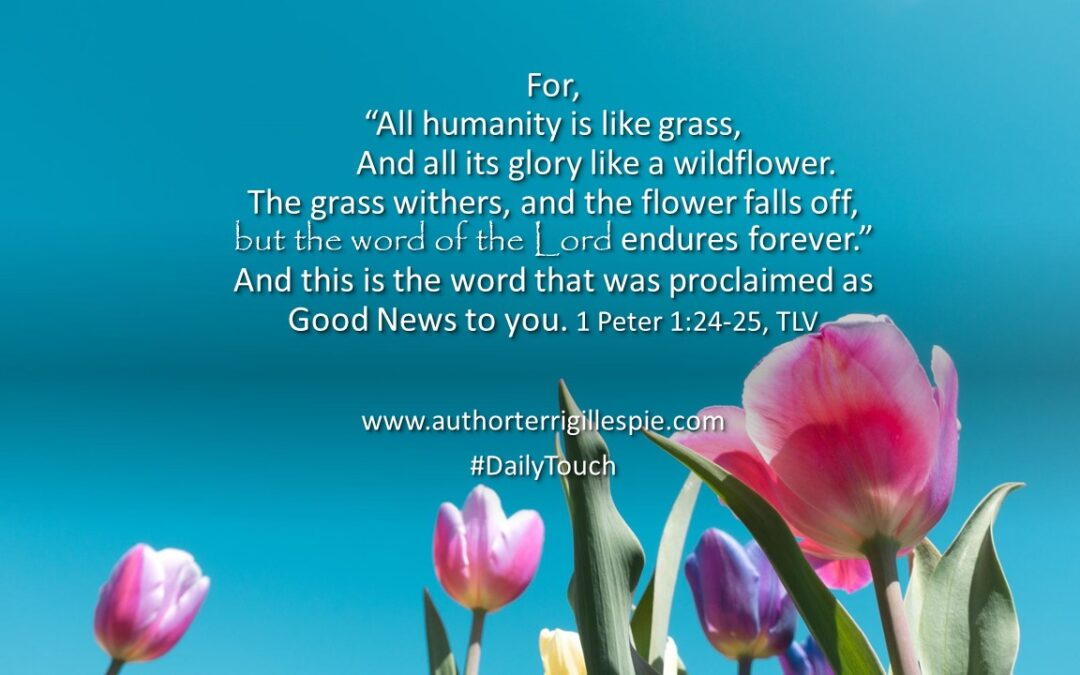 Daily Touch: Humanity is like grass . . .