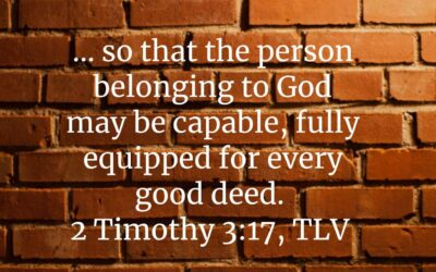 Daily Word: 2 Timothy 3:16-17