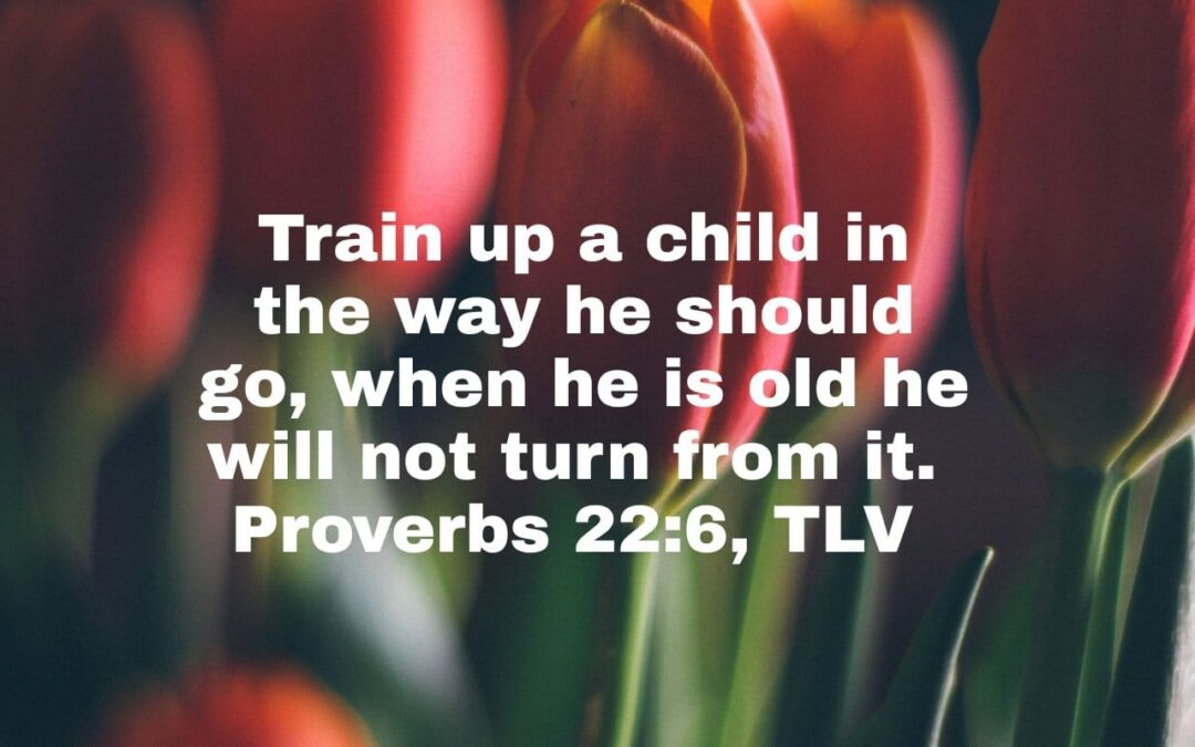 Daily Touch: Proverbs 22:6